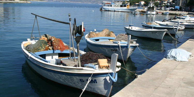 10 May - Brac -  Povlja - fishing boats in harbor